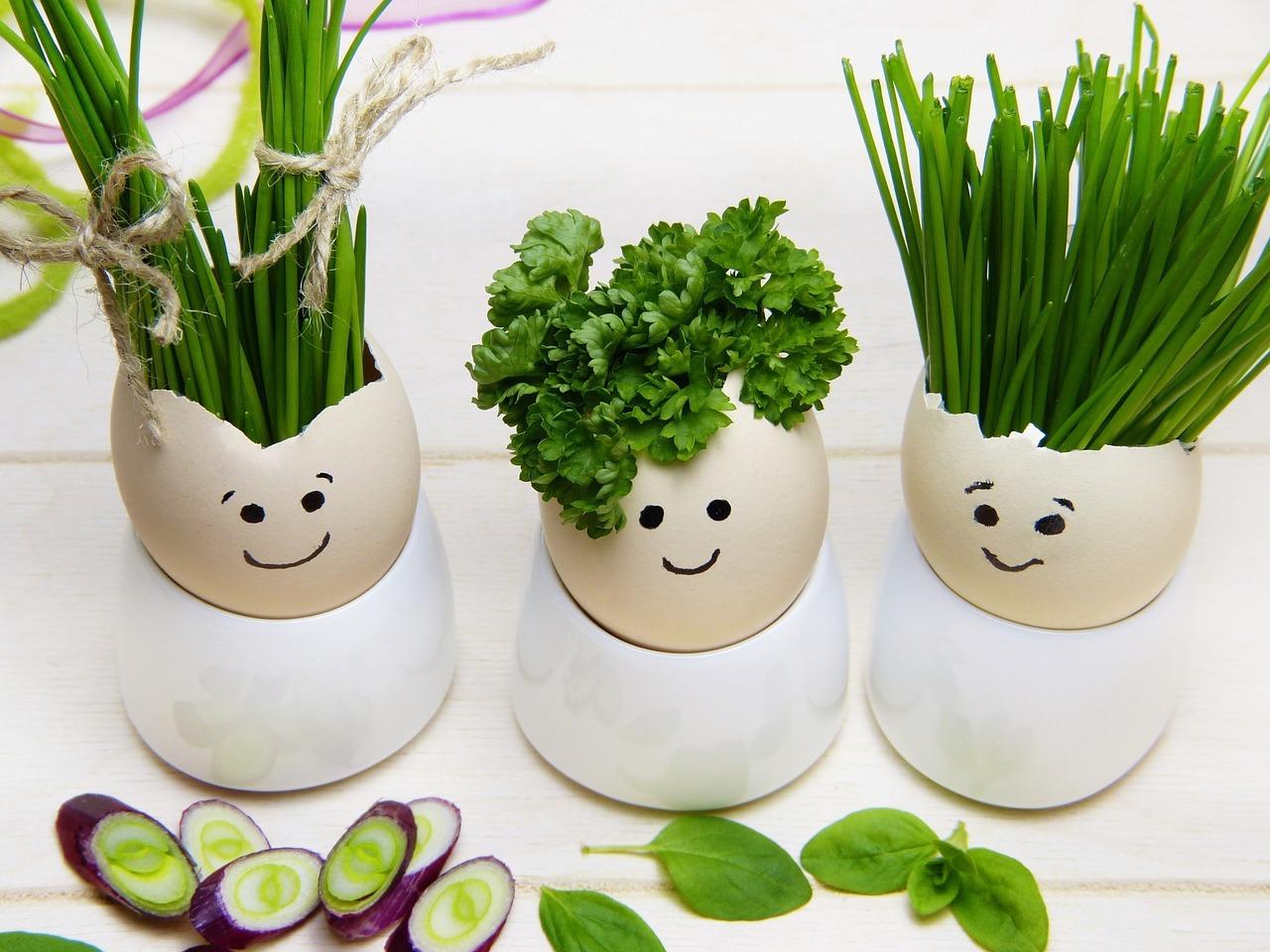 mimpi bawang putih