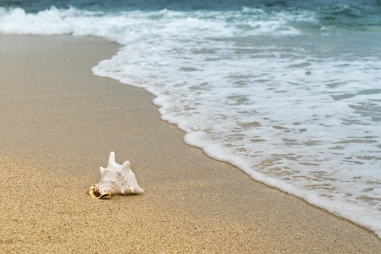 Apa Arti Bermimpi Pantai?