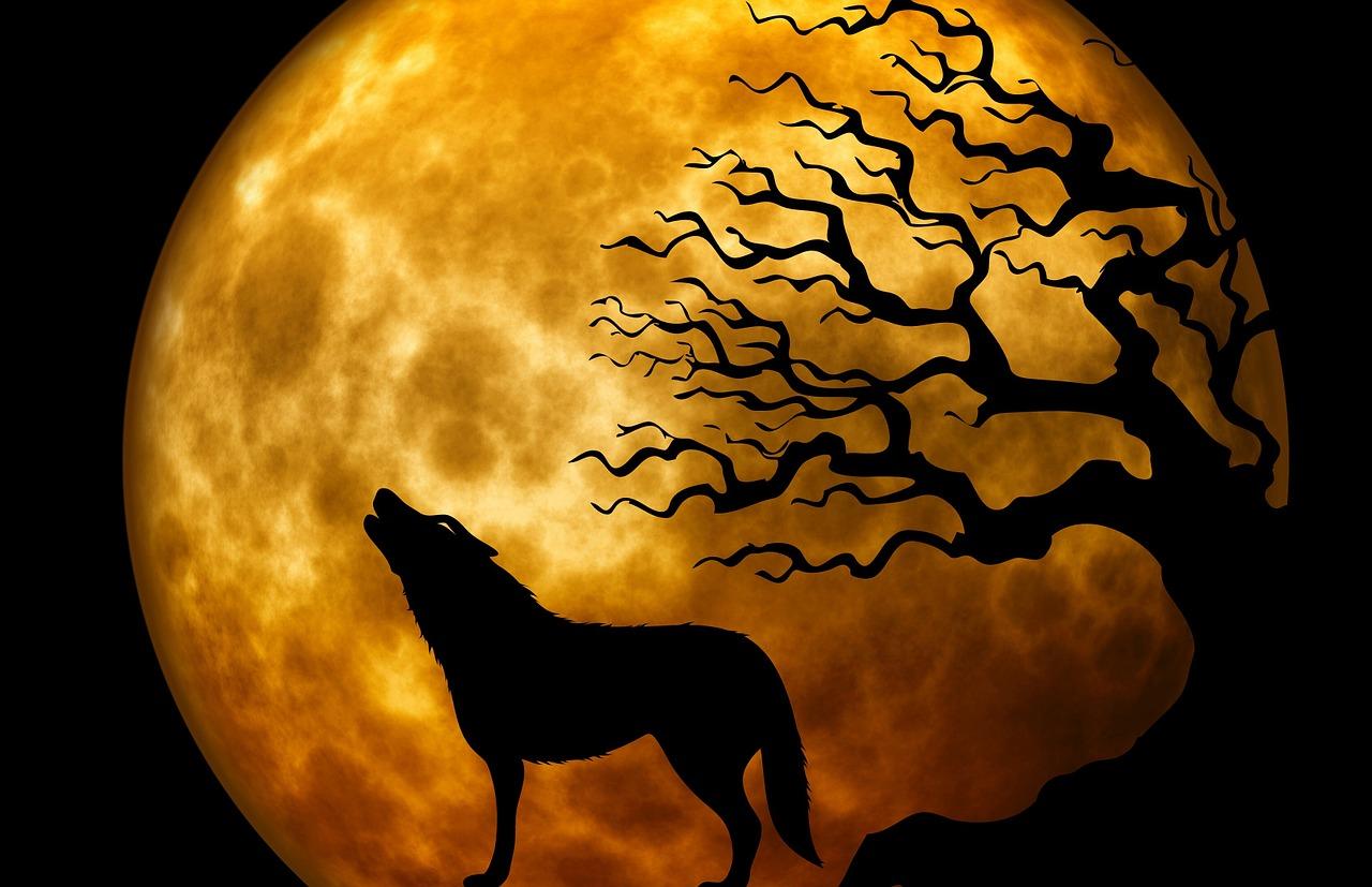 mimpi serigala jadi-jadian